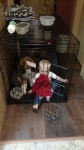 red.poodle.pup.in.crate.with.baby.jpg